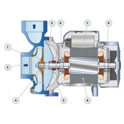Pompe a eau Pedrollo HF centrifuge de 6 à 25 m3/h monophasé 220V