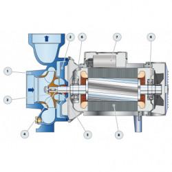 Pompe a eau Pedrollo HF centrifuge de 25 à 110 m3/h monophasé 220V