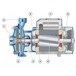 Pompe a eau Pedrollo 2CP 32-40 centrifuge de 8 à 24 m3/h triphasé 380V