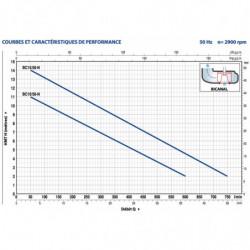 Pompe de relevage Pedrollo BC jusqu'à 39 m3/h triphasé 380V