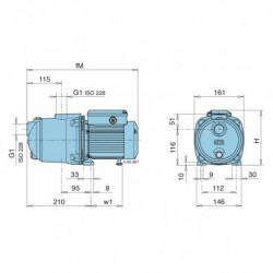 Pompe a eau Calpeda NGL autoamorçante fonte monophasé 220V