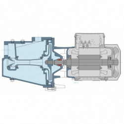 Pompe a eau Calpeda NG autoamorçante fonte monophasé 220V