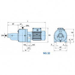 Pompe a eau Calpeda NG 32 autoamorçante fonte triphasé 380V