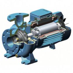 Pompe a eau Calpeda NM4-40 centrifuge à brides de 5,4 à 30 m3/h triphasé 380V
