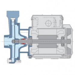 Pompe a eau Calpeda C centrifuge à roue ouverte de 0,6 à 6,6 m3/h triphasé 380V