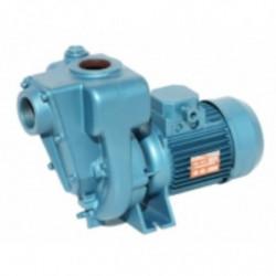 Pompe a eau Calpeda 0RA centrifuge à roue ouverte monophasé 220V