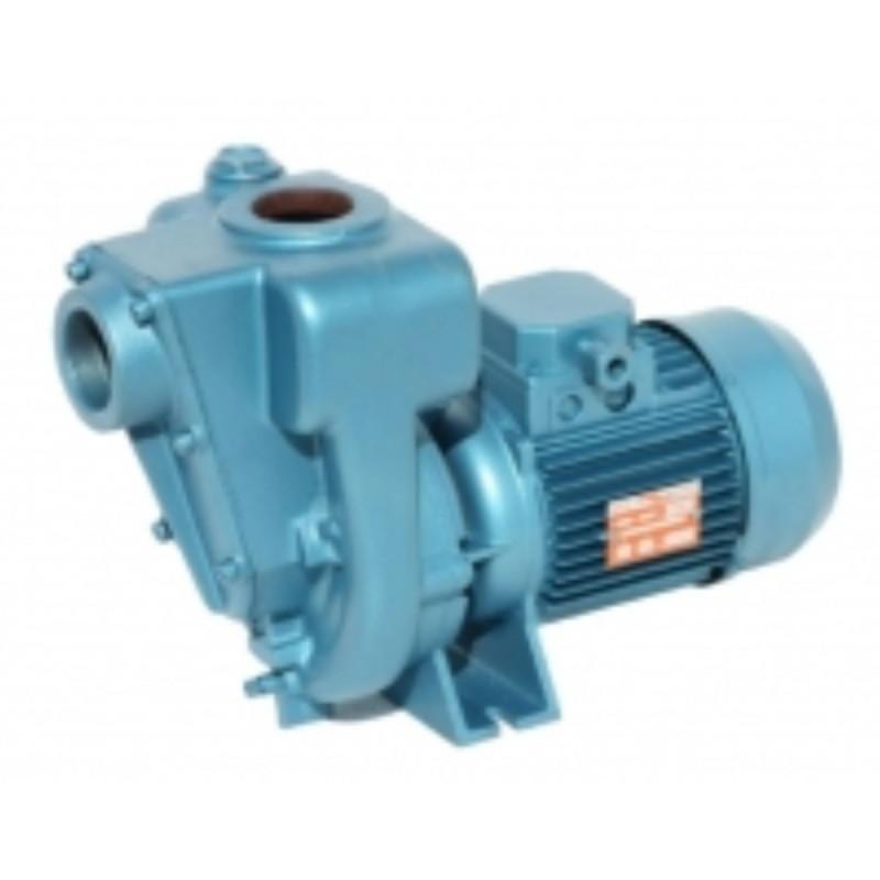 Pompe a eau Calpeda 0RA centrifuge à roue ouverte triphasé 380V