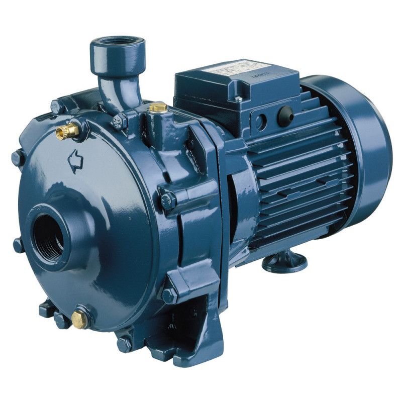 Pompe a eau Ebara CDA centrifuge à double roue en fonte triphasé 380V