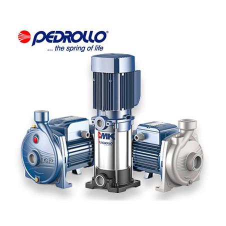 Pompe centrifuge Pedrollo triphasé 380v | LaBonnePompe.com